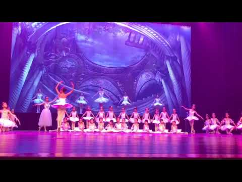 2017 CISCA Beijing Annual Gala Performance