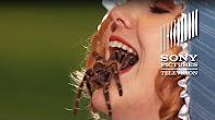 Mary Bleeds - The Gong Show - Продолжительность: 87 секунд