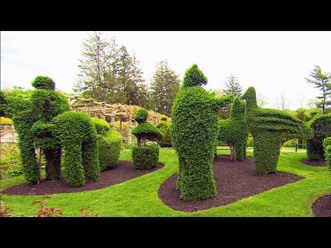 Nature: Topiary garden