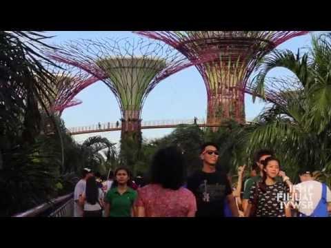 Urban Governance in Singapore - IFHP