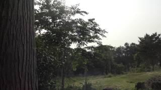 【皆神山】皆神神社【神社TV】富士浅間神社の後ろの謎の穴