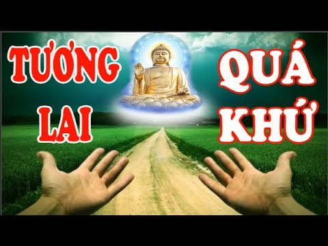 Xem video này để biết KIẾP TRƯỚC và KIẾP SAU của bạn là ai | Những Lời Phật dạy