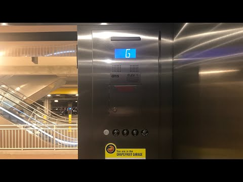 NEW Scenic Otis Gen2 Elevators at Grapefruit Parking Garage, Disney Springs, Lake Buena Vista, FL