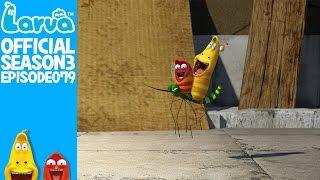 exclusive - official bouncy ball - larva season 3 episode 79