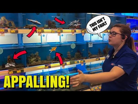 PETSMART WORKER TELLS THE TRUTH ABOUT DYING FISH!