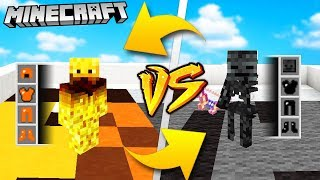 WITHER SKELETON VS BLAZE - MINECRAFT | Vito VS Bella