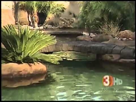 Tropical pools design services lake havasu city az for Az pond and pool