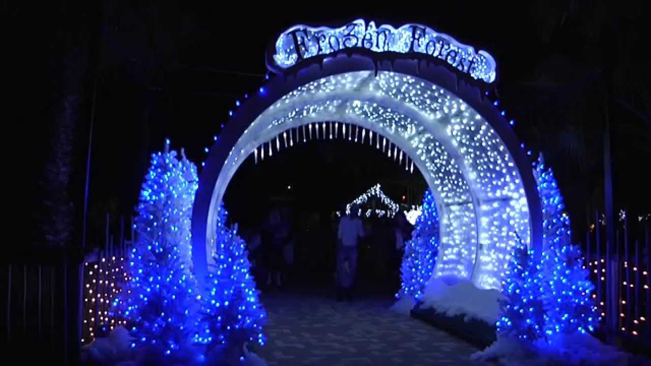 Lowry Park Zoo Christmas.Wild Wonderland 2014 At Tampa S Lowry Park Zoo