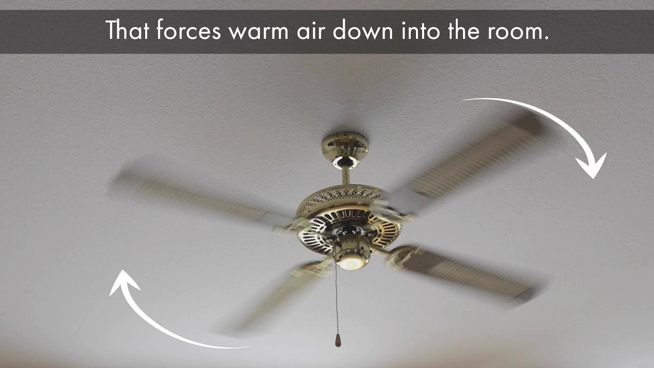 Ceiling Fan Rotation Pemco Insurance