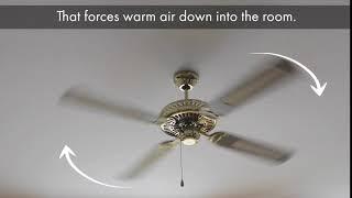 Ceiling fan rotation | PEMCO Insurance