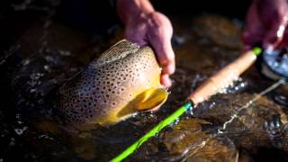 the jp ross beaver meadow small stream fly rod into the wilderness