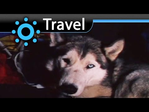 Himalayas Expedition with Huskys (Nanuk) Vacation Travel Video Guide