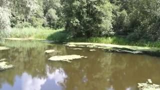 Река #Усманка