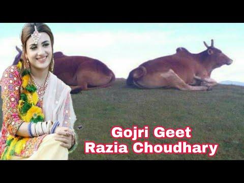 Naam Razia Begum Mera Mai Dardah Di Mari || Super Hit New Gojri loog Geet ||HD video Himachal