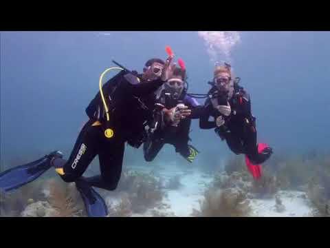Начальный курс дайвинга  Обучающее видео PADI Open Water Diver PADI OWD  часть 5