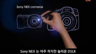 Sony NEX APS HD CMOS Sensor movie (넥스 센서 이야기)