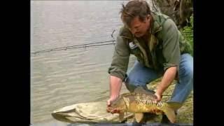 Erfolgreich angeln - Karpfenangeln für Anfänger (1)