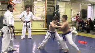В роли сумоистов выступили каратисты