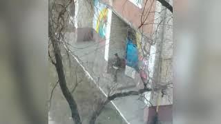 Тольятти Голосова 20 библиотека. На зас*#ранцев просьбы соблюдать чистоту не действуют