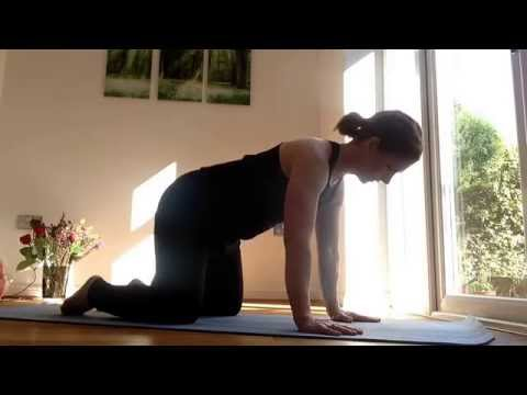 Introduction to back flexibility by gingernut yoga