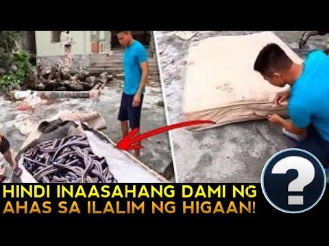 Download NAKAKAKILABOT! MGA AHAS SA LOOB NG KAMA? VIRAL NGAYON! | CabreraLism TV | kmjs | kmjs latest episode