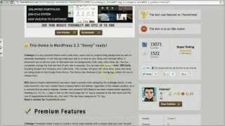 How a single WordPress theme made $370k