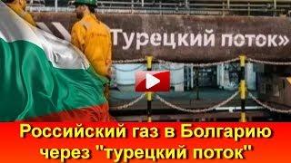 Болгария начала получать российский газ из Турецкого потока