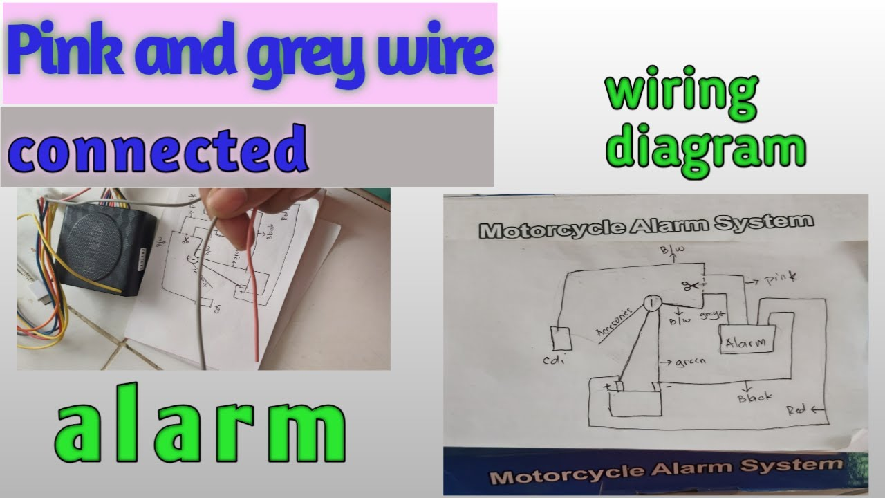 Pink And Grey Wire Ng Anti Theft Alarm Wiring Diagram Motorcycle Alarm System Wiring Tutorial Youtube