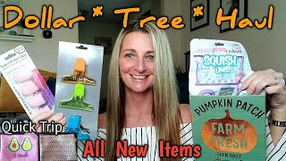 Dollar Tree Haul ❤All NEW❤ Quick Trip To DT | Sept 1