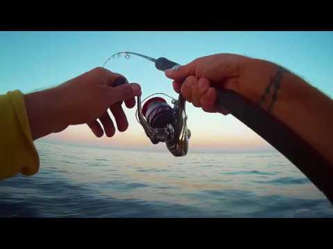 pêche en dérive à Marseille 22 & 29/07/2017