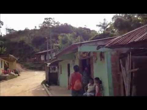 VIDEO CASAVERDE TOLIMA