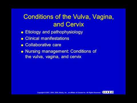 Female Reproductive Alterations
