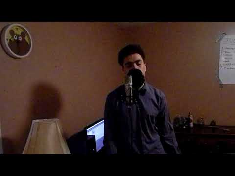 Childish Gambino - ii. Shadows (Vocal Cover)