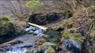 昔は足湯ができる位湧出していたとのこと。 8.5℃, pH8.03, 576μS/cm.
