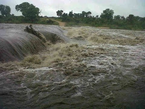 Kruger Floods - 19 January 2013 - Latest Sightings