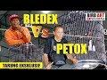 Tarung Eksklusif Murai Batu Petox Vs Bledex Di Simpang Lima Award  Mp3 - Mp4 Download