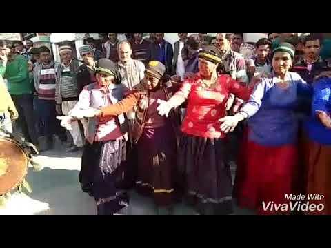 Uttarakhandi ( Jaunsari ) Look Nirtiye ## Village Haja