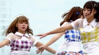 可愛い=せいあちゃん な曲です♪ 手塚せいあ/Say-Ya!! [DVD] 好評発売中...