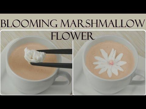 DIY Blooming Marshmallow Flower I Aufblühende Marshmallow-Blumen selber machen