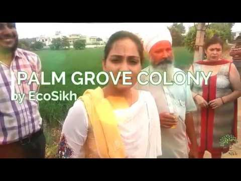 Sonali Giri IAS MC Commissioner, Amritsar and Eco-Amritsar During Plantation Drive