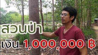 วิธีทำสวนป่าเงิน 1,000,000 แบบวนพรรณการ์เด้น (Growing Economy Tree) Farm Staion