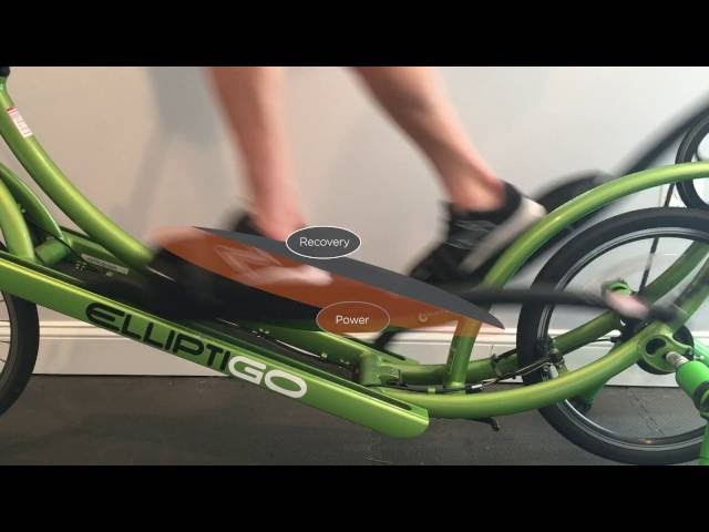 Learning the Long Stride of ElliptiGO Elliptical Bicycles