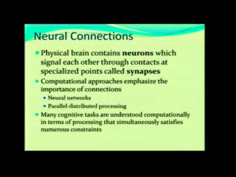 HCI   CRUM: Neural Connections