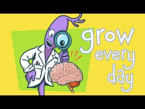 Brain Jump with Ned the Neuron: Challenges Grow Your Brain