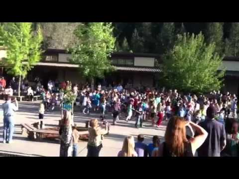 Weimar Hills 4th grade flash mob