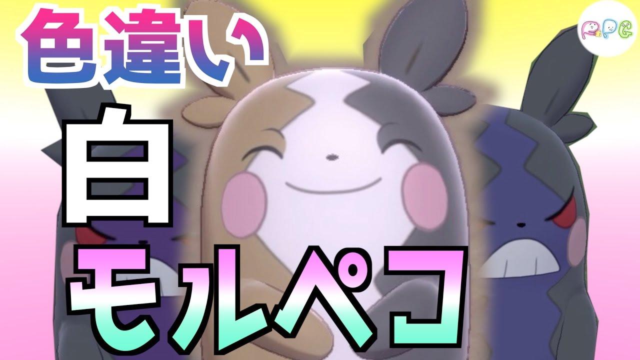 【ポケモン剣盾色違い】4 白いモルペコ出してみた【国際孵化マラソン】