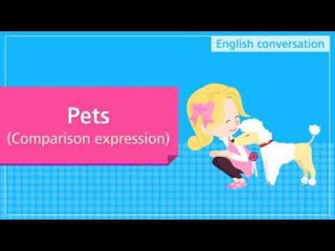 learn english5