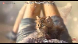 [Karaoke] Như loài mèo - Beat