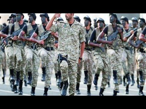 الملاذ الآمن الدائمة قرد بحث عن جهود رجال الأمن في المحافظة على الأمن Comertinsaat Com