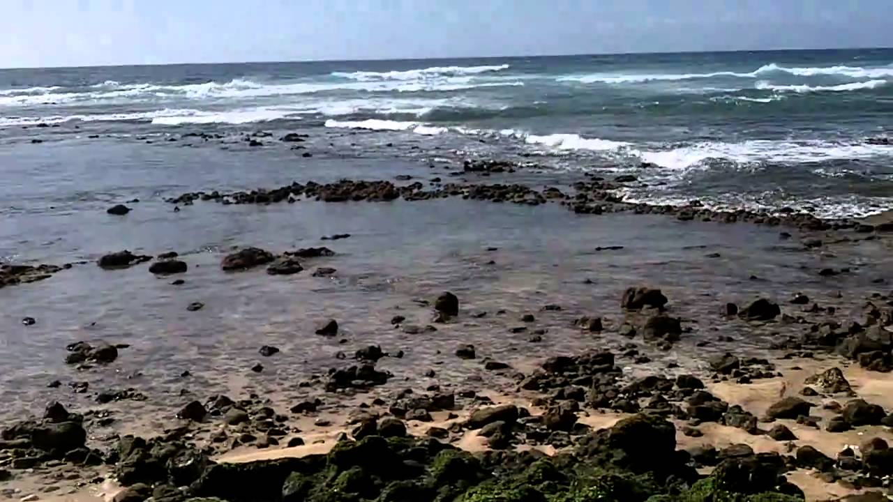 hawaii tsunami water receding 2011 hd